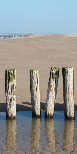 Zeeuwse strandpalenrij met waterspiegeling