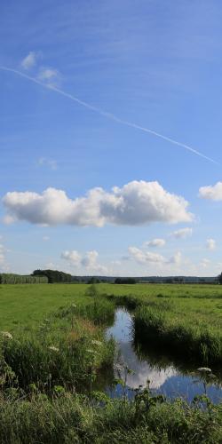 Weiland met water en wolken