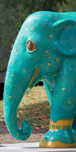Olifant beschilderd 2