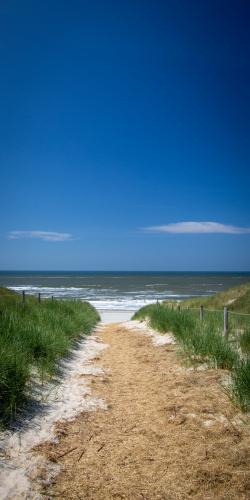 Pad door duinen naar zee