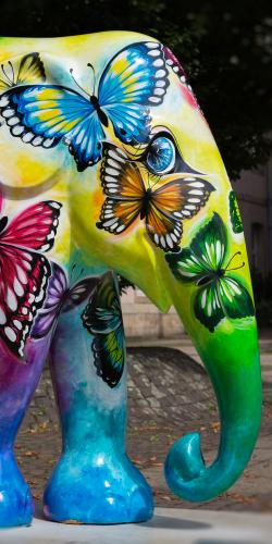 Olifant beschilderd 3