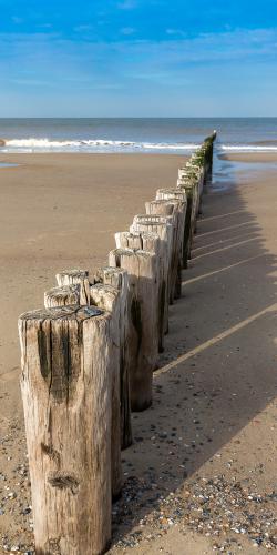 Zeeuwse strandpalenrij