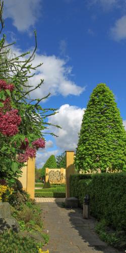 Pad door tuin