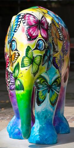 Olifant beschilderd